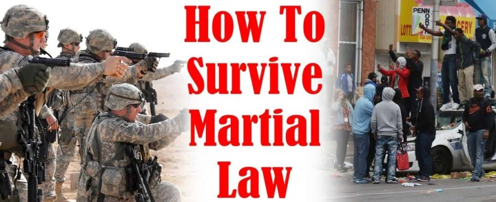 Prepper's Will - How To Survive Martial Law