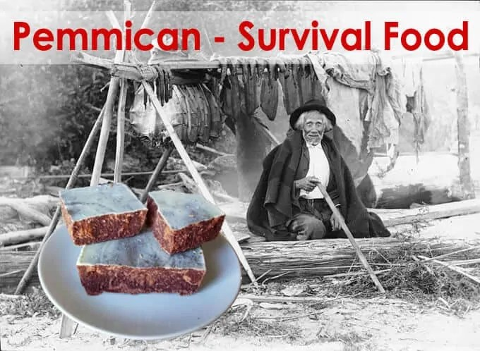 Prepper's Will - Pemmican ultimate survival food