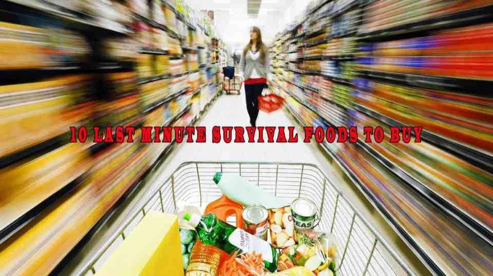 10 Last Minute Survival Foods To Buy