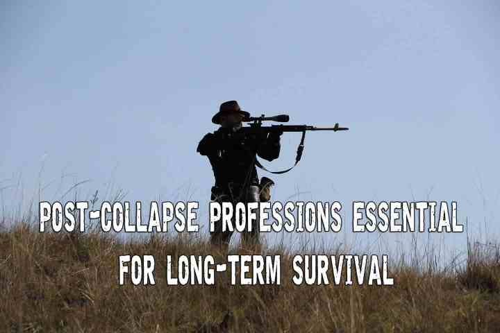 post-collapse-professions-essential-for-long-term-survival