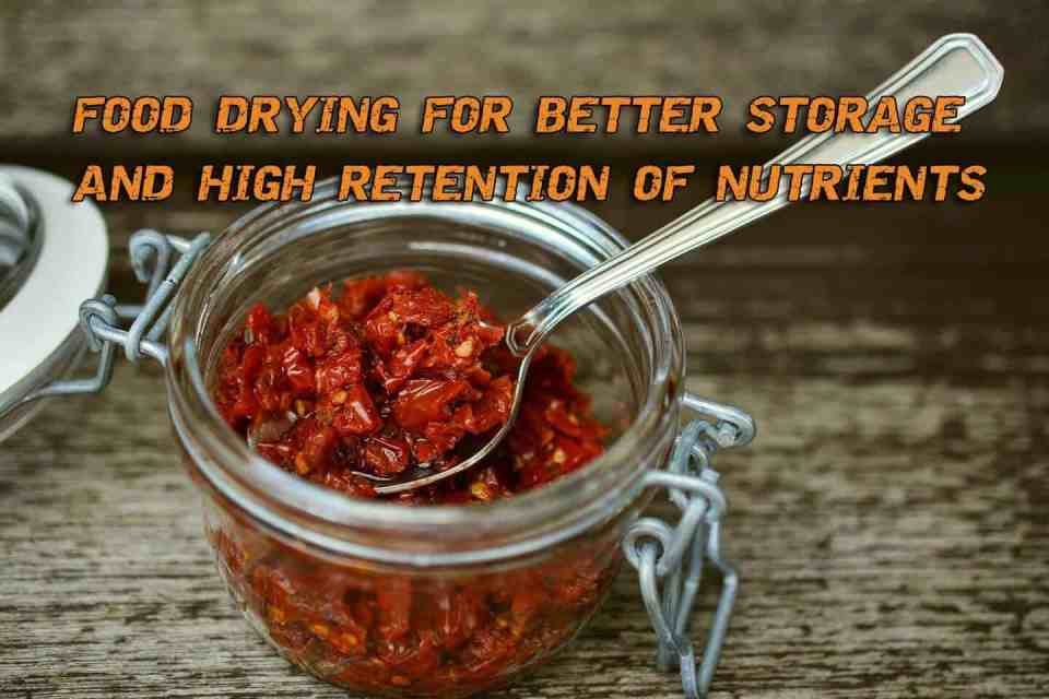 Food Drying For Better Storage And High Retention Of Nutrients