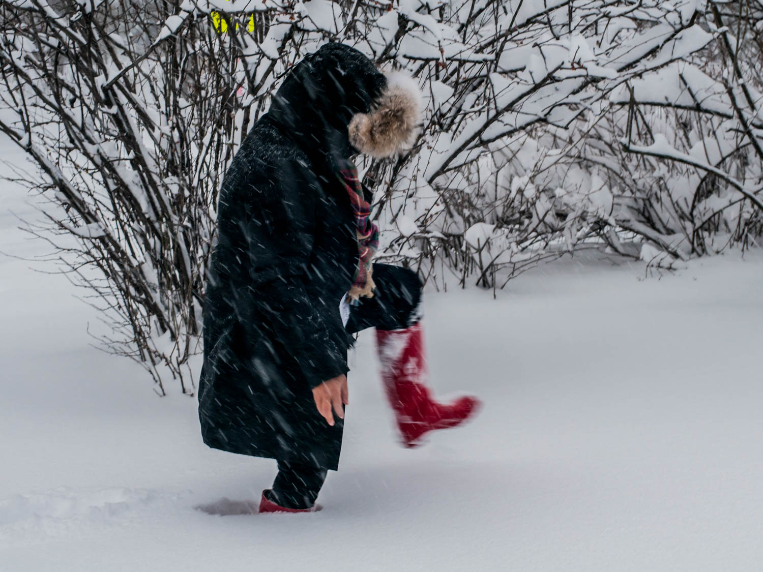 stomping in snow