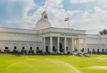 IIT Roorkee develops technology for conversion of pine leaves into fuel