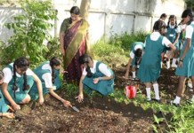 Students of UP govt. schools to create own kitchen gardens