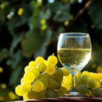 Учени от БАН призовават: Пийте повече ракия!