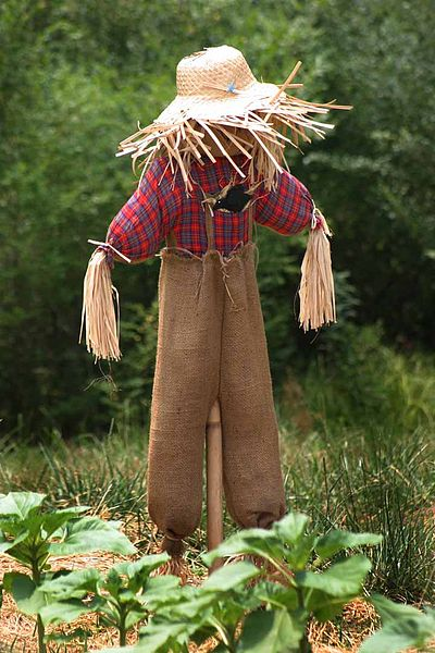 Scarecrow Songs For Kids Preschool Learning Online