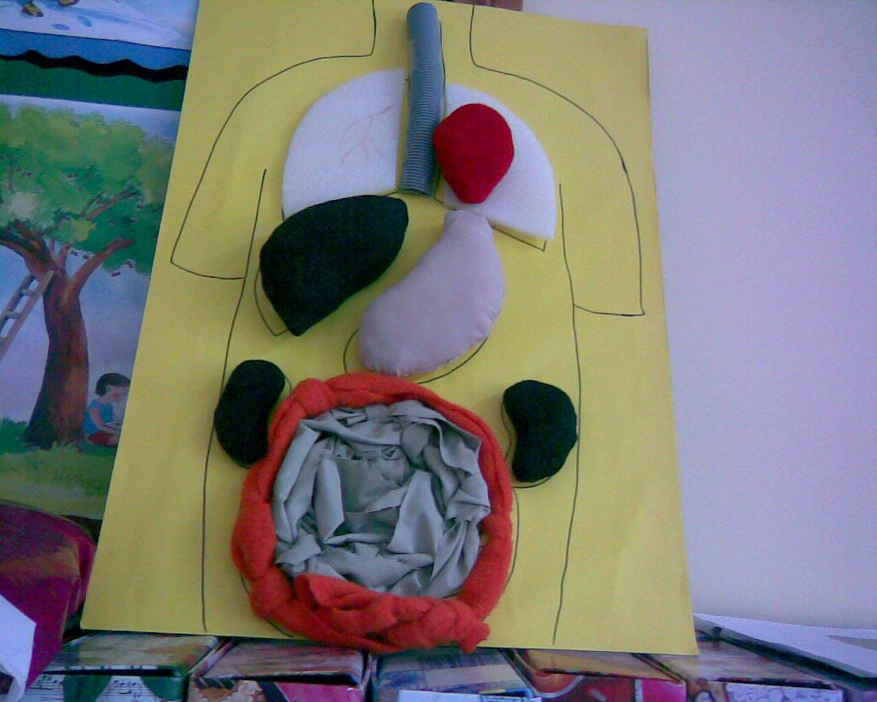 Human Body Craft Preschoolplanet