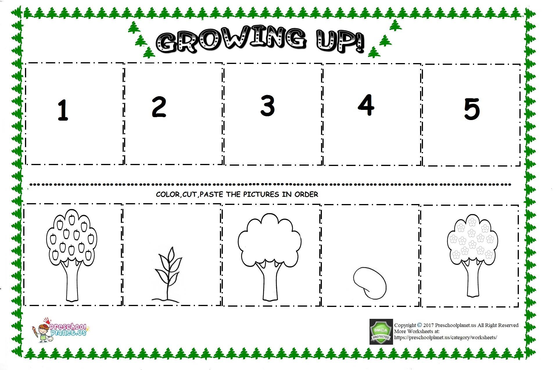 Apple Tree Life Cycle Sequencing Sheet
