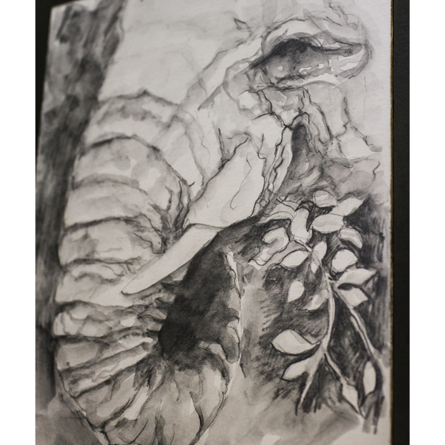 pencil drawing aquarelle icon