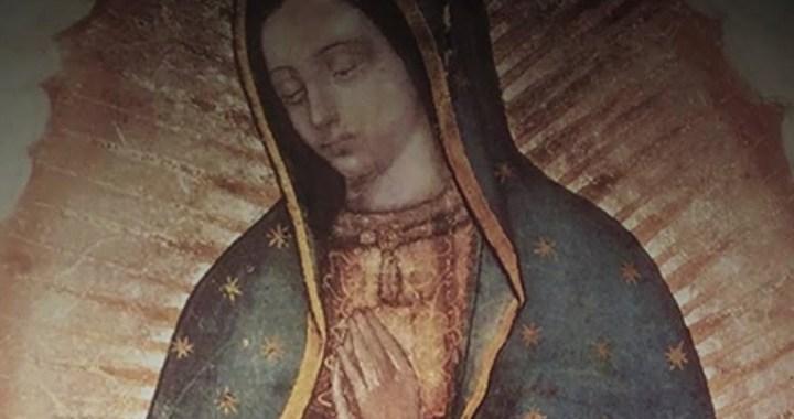 Una armonía perfecta en el manto de la Virgen de Guadalupe