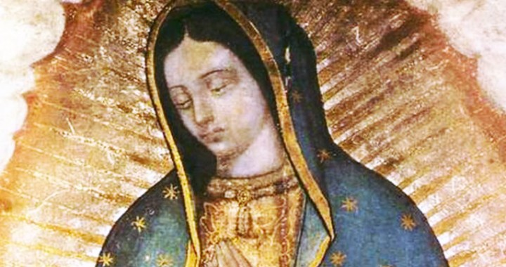 América Latina será consagrada a la Virgen de Guadalupe