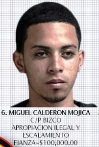 Miguel Calderón Mojica
