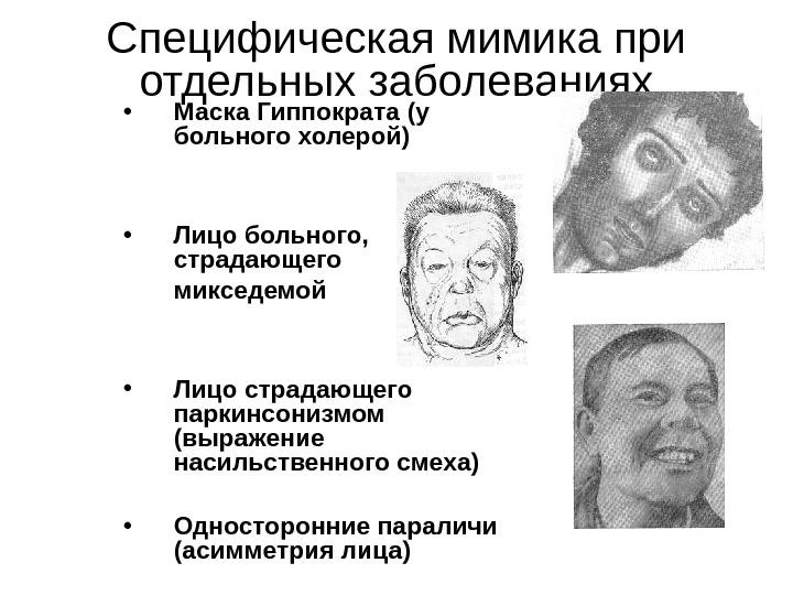 fat de grăsime al maxilarului)