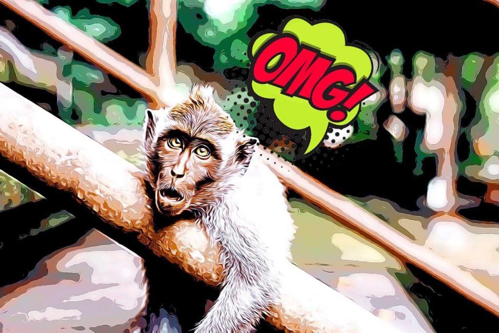Mono sorprendido al descubrir la mejor técnica para hablar en público
