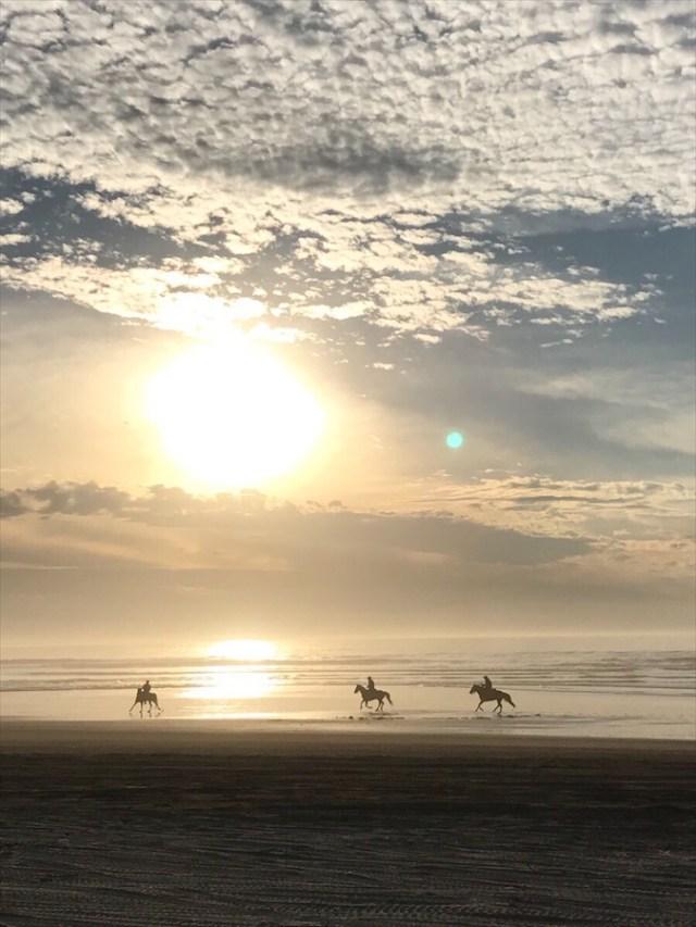 sunset-pismo-horses