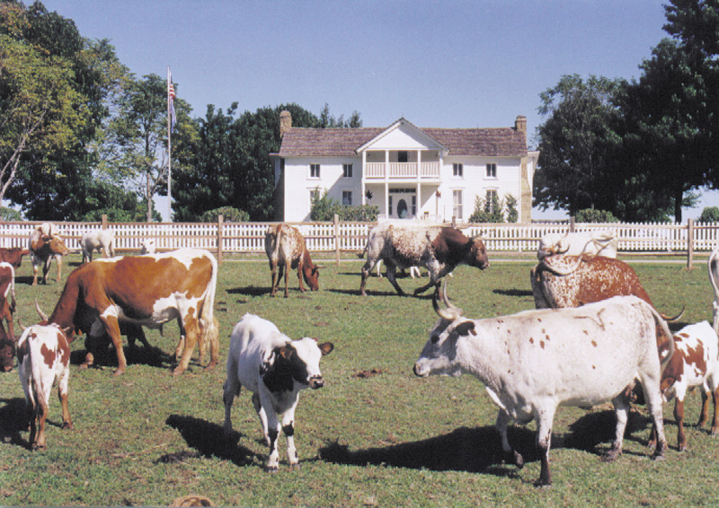 Dog Iron Ranch. Photo source: Stock photo from The Will Rogers Memorial Museum.