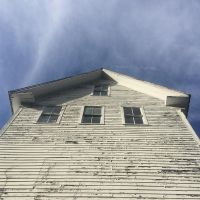 Looking up in Wardsboro, VT. #presinpink