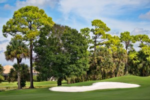 COUNTRY CLUB IN HAVERHILL FLORIDA - http://preserveatironhorse.com/country-club-haverhill-florida/