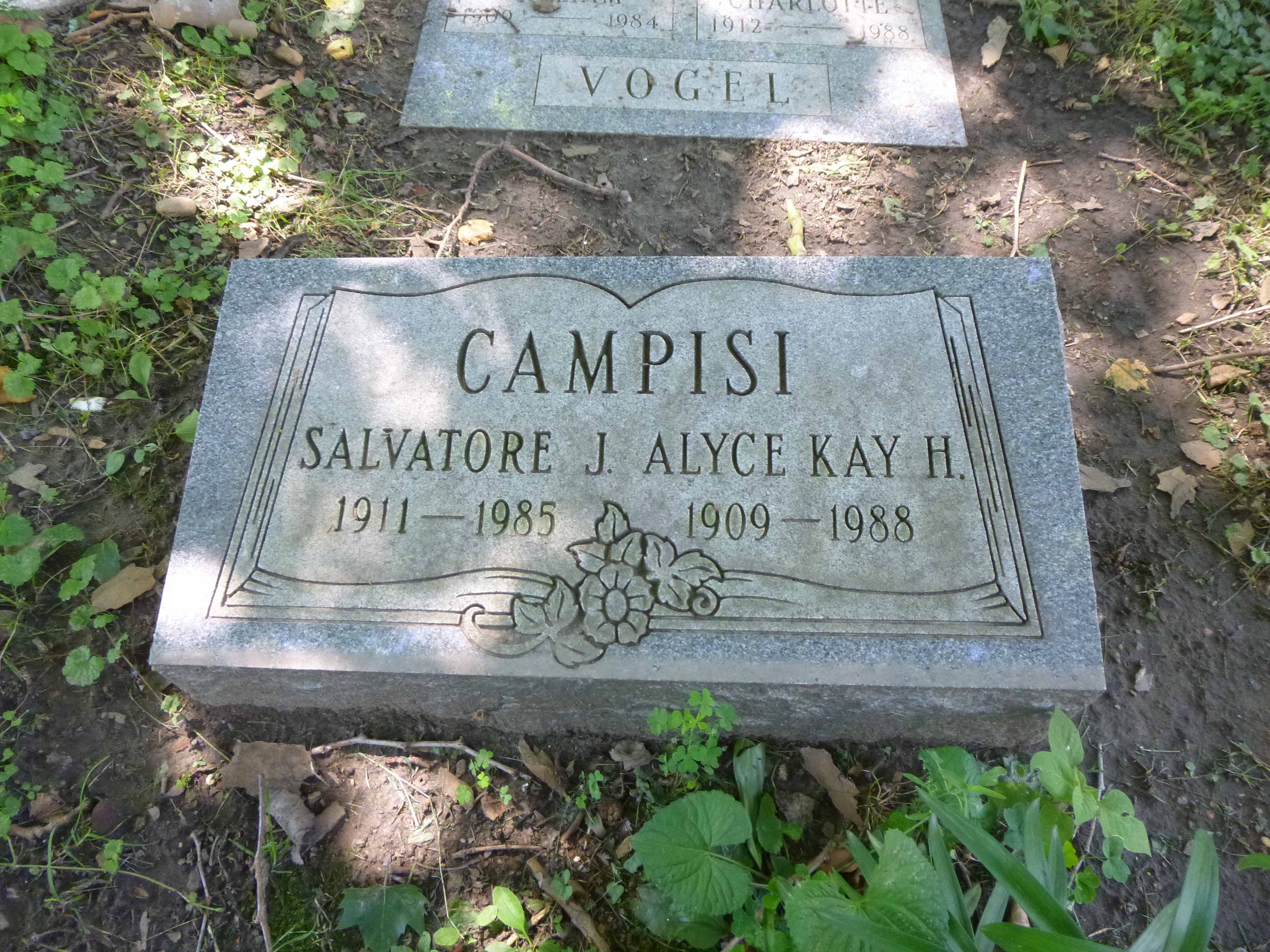 Read more about the article Salvatore and Alyce Campisi