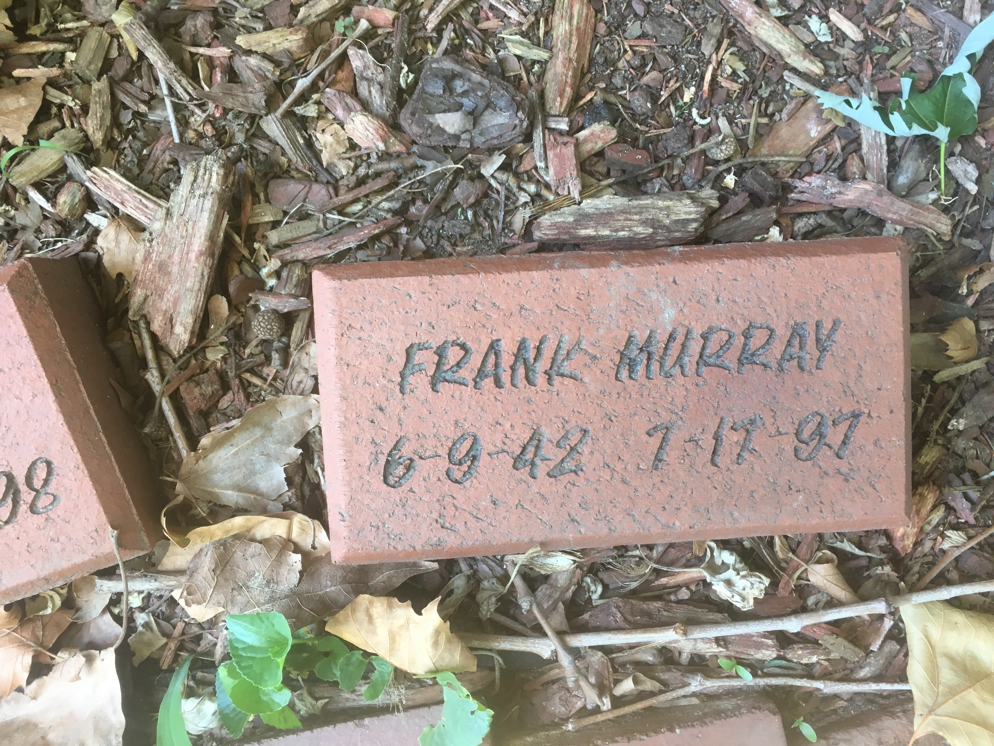 Read more about the article Frank Murray