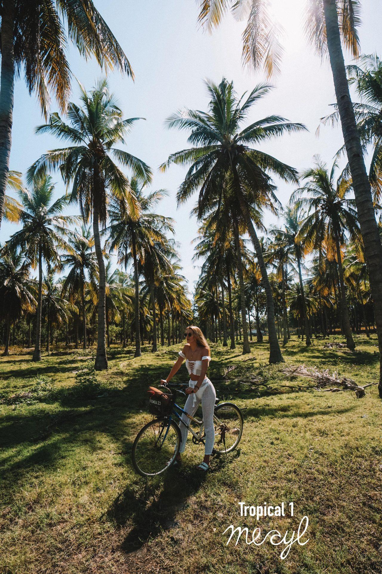 Tropical Mobile 1, Tropical Desktop1 , before / after, presets, lightroom - Meryl Denis Presets