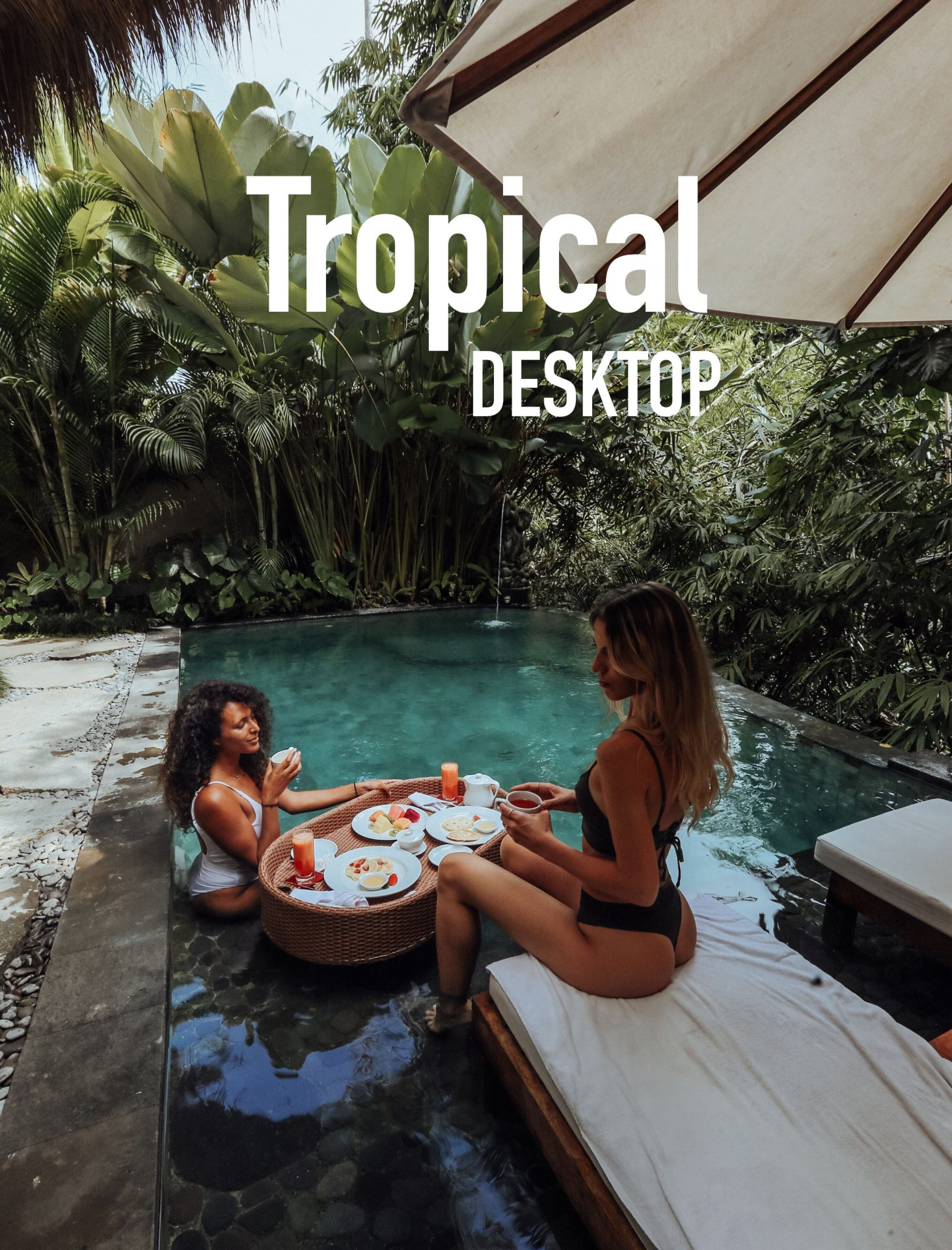 Tropical Desktop - Meryl Denis Presets