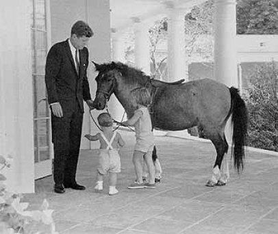 Jfk S Horse Macaroni Presidential Pet Museum