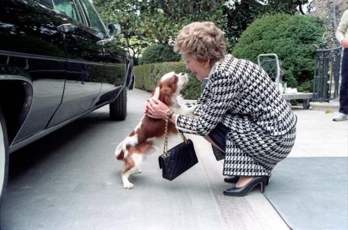 Nancy Reagan pets Rex, April 10, 1986.