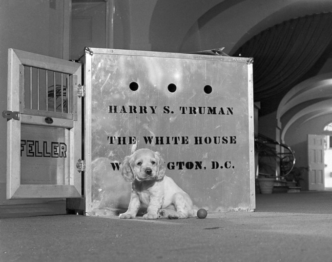 Feller arrived at the White House as a gift in a giant crate, December 1947.
