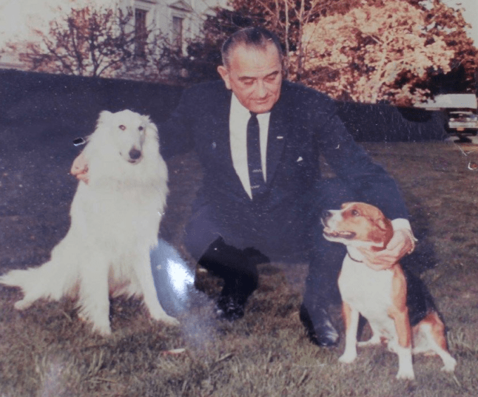 Christmas card photo of President Johnson with Blanco and Him.