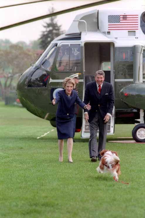 Happy Presidents Day - Cavalier King Charles Spaniel Blog