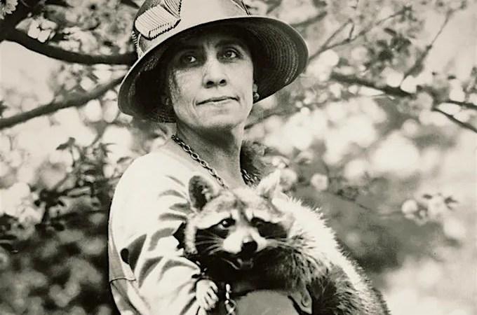 Calvin Coolidge's Pet Raccoon Rebecca