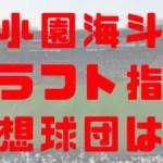 2018年 ドラフト 報徳学園 小園海斗 指名予想球団 成績 経歴 特徴