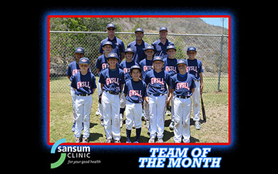 10U All Stars highlight a banner summer for GVSLL