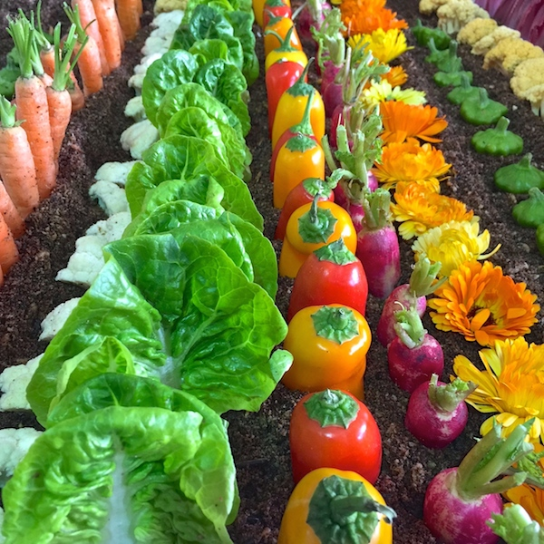 an edible vegetable garden