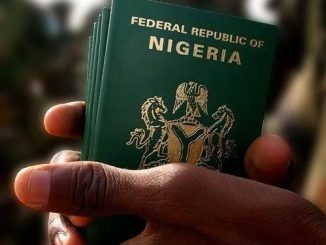38,051 foreigners applied for Nigerian citizenship in 2 years ― FG