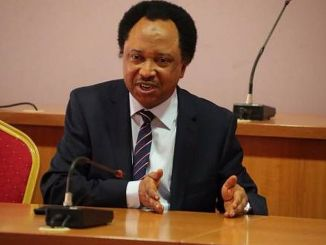 Shehu Sani Reacts To Increase Of Electricity Tariff