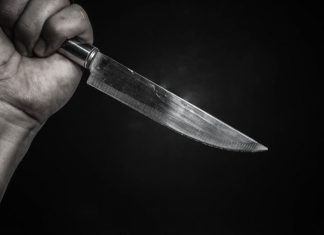 Woman allegedly stabbed multiple times by brother-in-law for 'no reason'