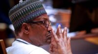 PDP Condemns Buhari For Not Taking Action