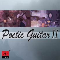 poeticguitar2