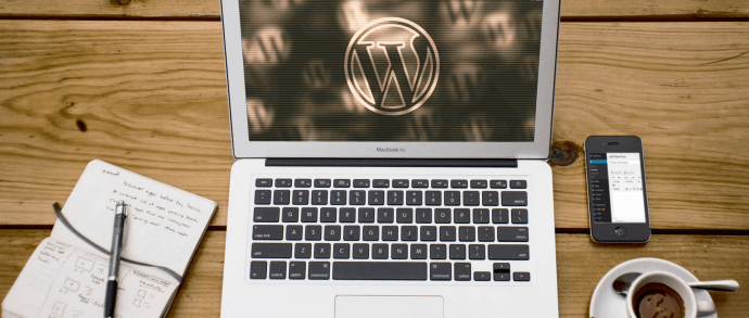 WordPress Hosting Options