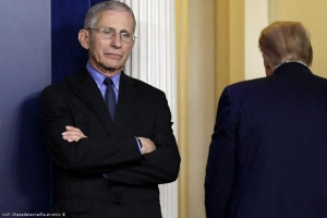 Media: Trump calls Fauci one