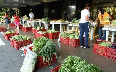425 local government units buy P5.8B in agri products to help farmers, fisherfolk