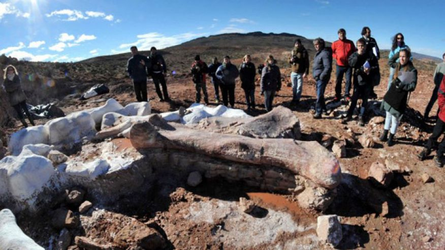 The femur of Titanosaurus which was found in Argentina