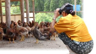 【飲⾷業界初のVR研修】塚田農場、従業員の六次産業化教育にVRを導入