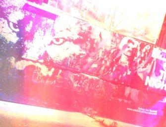 Frequency Festival 2013: Die geniale zweite Nacht im Nightpark