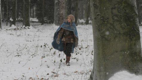 Die-Legende-vom-Weihnachtsstern-©-2012-Filmladen(1)