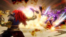 Hyrule-Warriors-©-2014-Nintendo,-Tecmo-Koei-(6)
