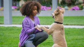 Annie-©-2014-Sony-Pictures-Releasing-GmbH(4)