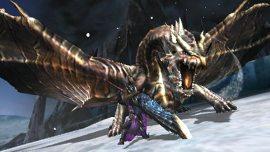 Monster-Hunter-4-Ultimate-©-2015-Capcom-(9)